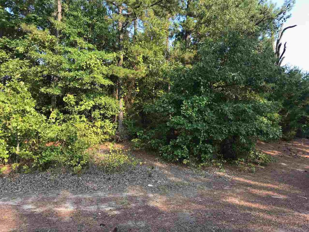 Photo of home for sale at 0000 Poppy Rd, Gilmer TX