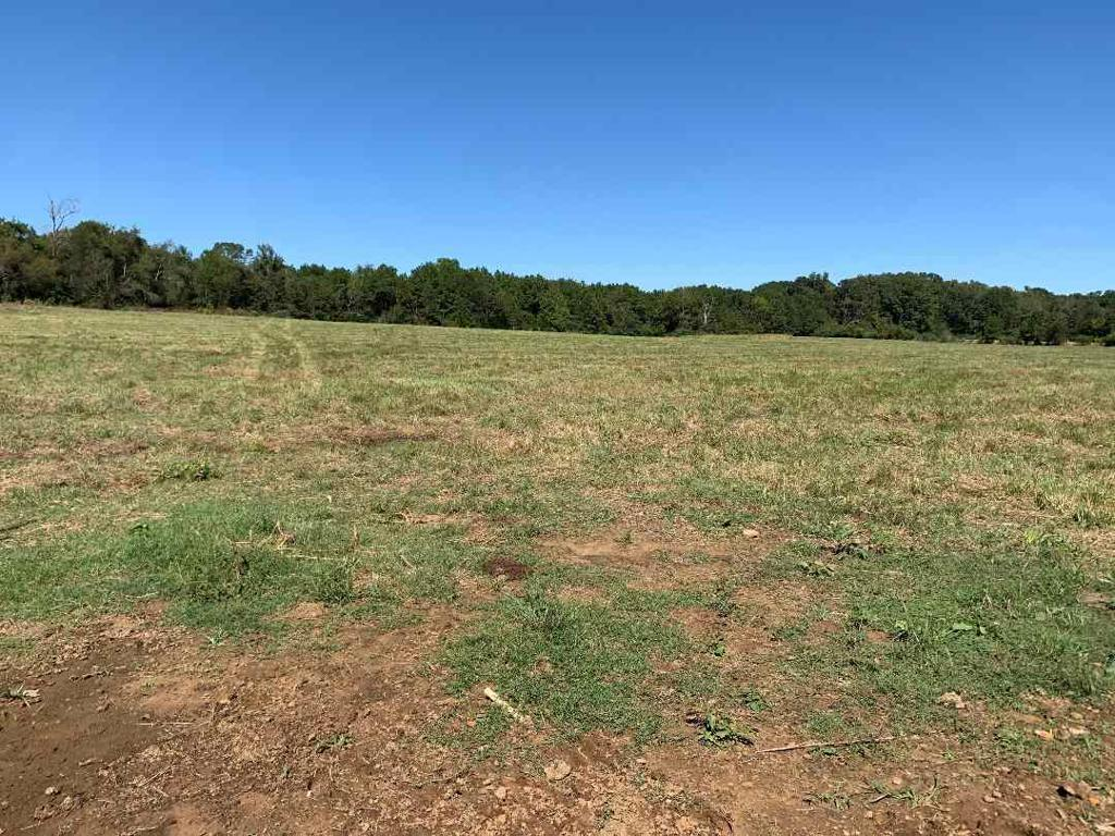 Photo of home for sale at TBD FM 1998, Marshall TX