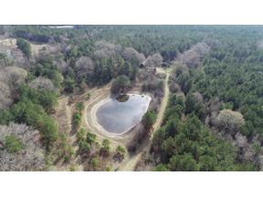 Property for sale at TBD HWY 154, Diana,  Texas 75640