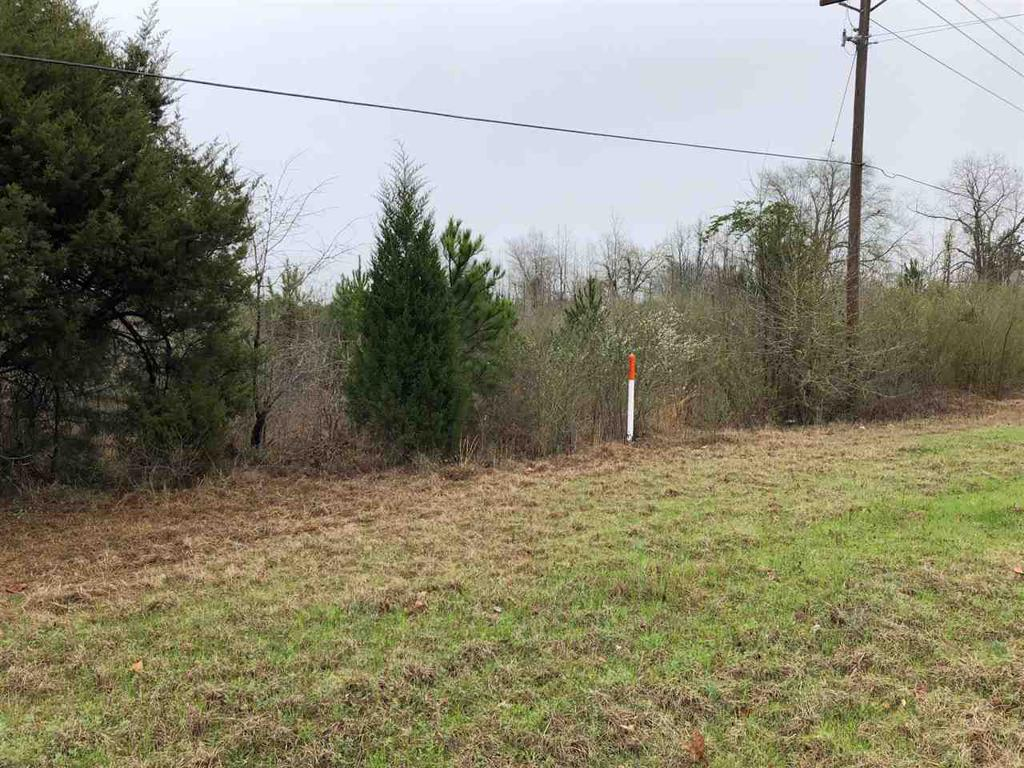 Photo of home for sale at TBD Hwy31/ Elysians Fields Rd, Marshall TX