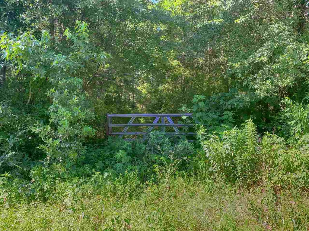 Photo of home for sale at TBD US Highway 80 E, Marshall TX