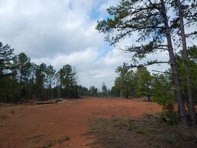 Photo of home for sale at TBD 81 ACRES PERIWINKLE RD., Ore City TX