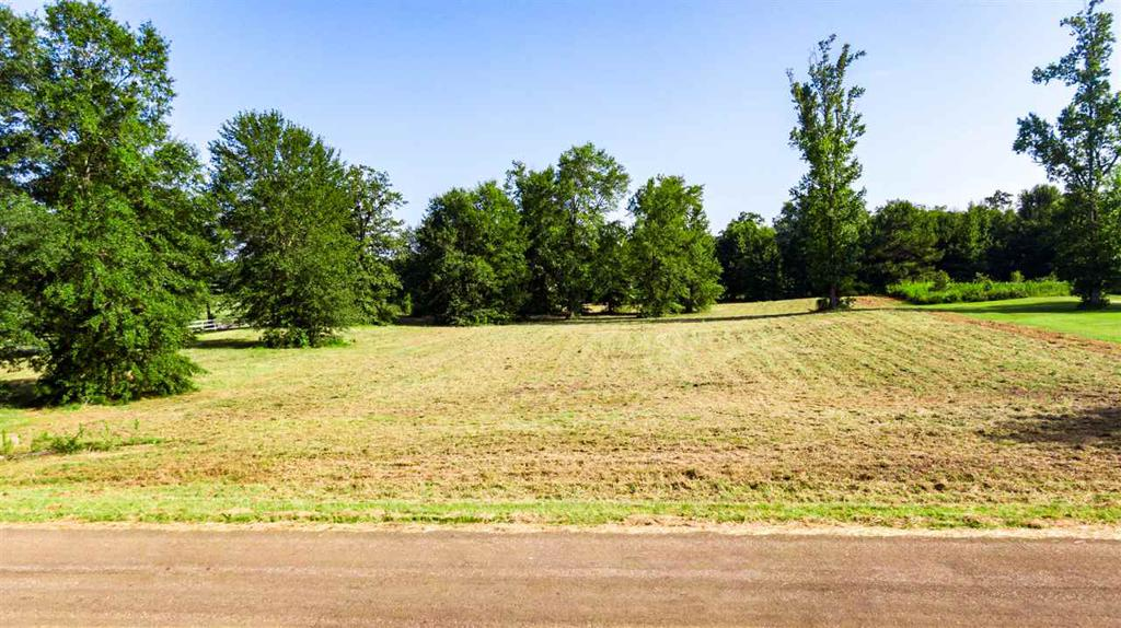Photo of home for sale at 118 Deerfield Rd, Longview TX