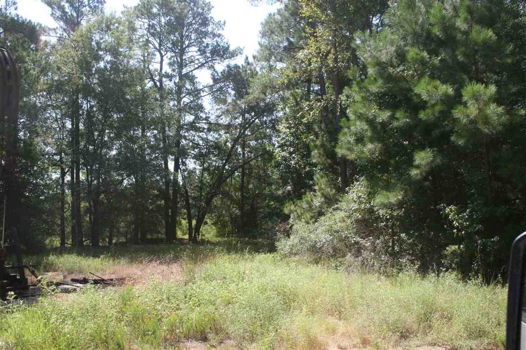 Photo of home for sale at TBD FM 125, Bivins TX