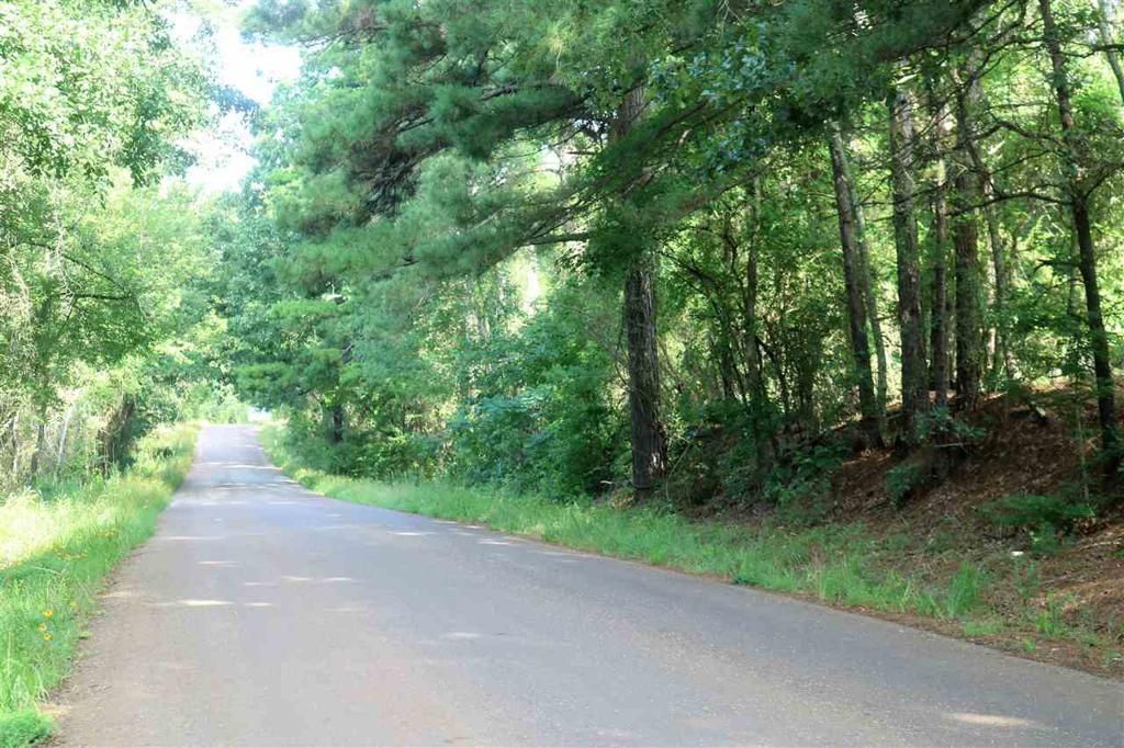Photo of home for sale at TBD Davidson Road 92.418 Ac, Diana TX
