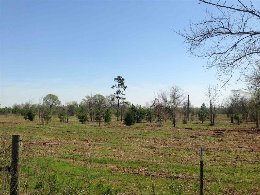 Photo of home for sale at #1 CR 153, Carthage TX