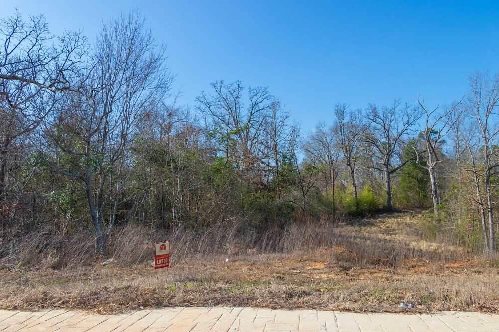 Photo of home for sale at 4221 SAVANNAH HILLS LN, Longview TX