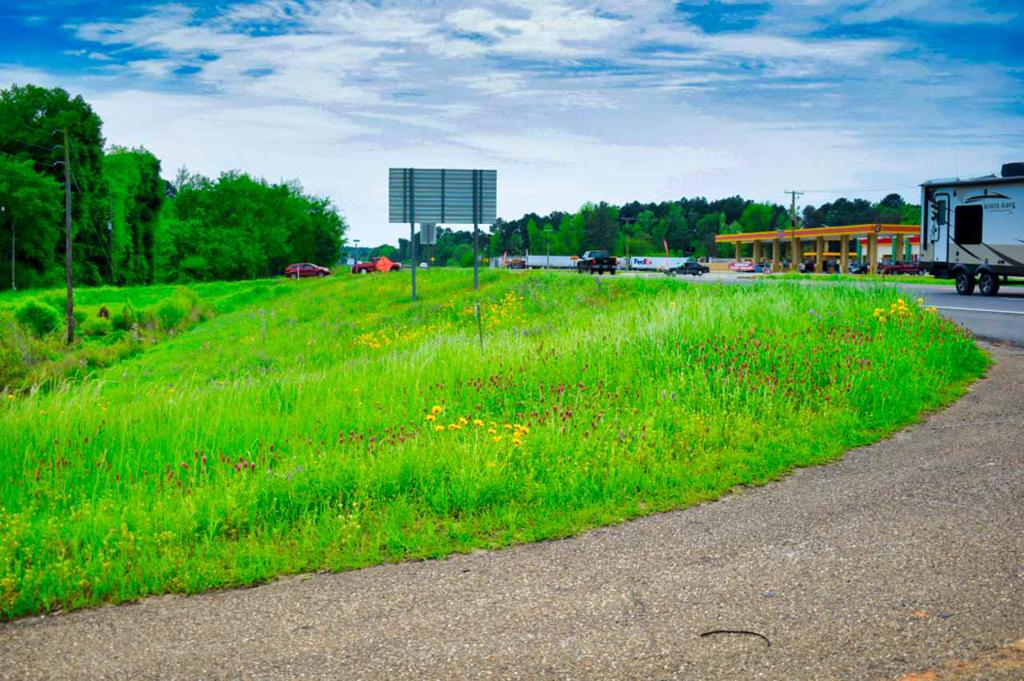 Photo of home for sale at 00 Hwy 59, Jefferson TX