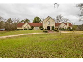 Property for sale at 3974 S Sego Lily Rd, New Diana,  Texas 75640
