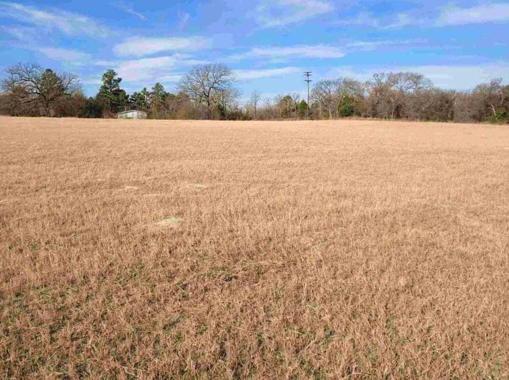Photo of home for sale at TBD CR 3907, Athens TX