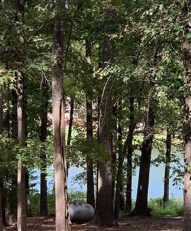 Photo of home for sale at TBD OAKWOOD DR, Gilmer TX