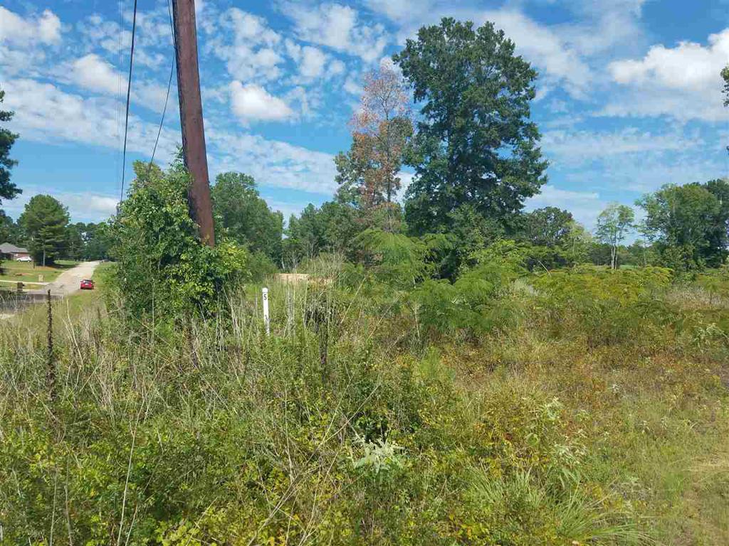 Photo of home for sale at Lot 5 Lori Lane, Longview TX