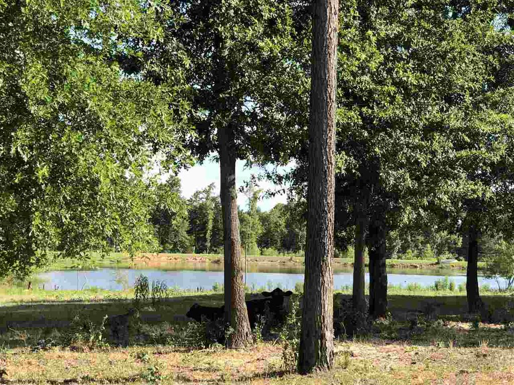 Photo of home for sale at 7319 Aster Rd., Gilmer TX