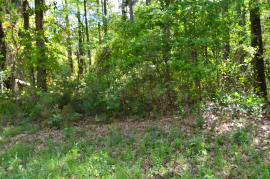 Photo of home for sale at TBD FM 2796, Gilmer TX