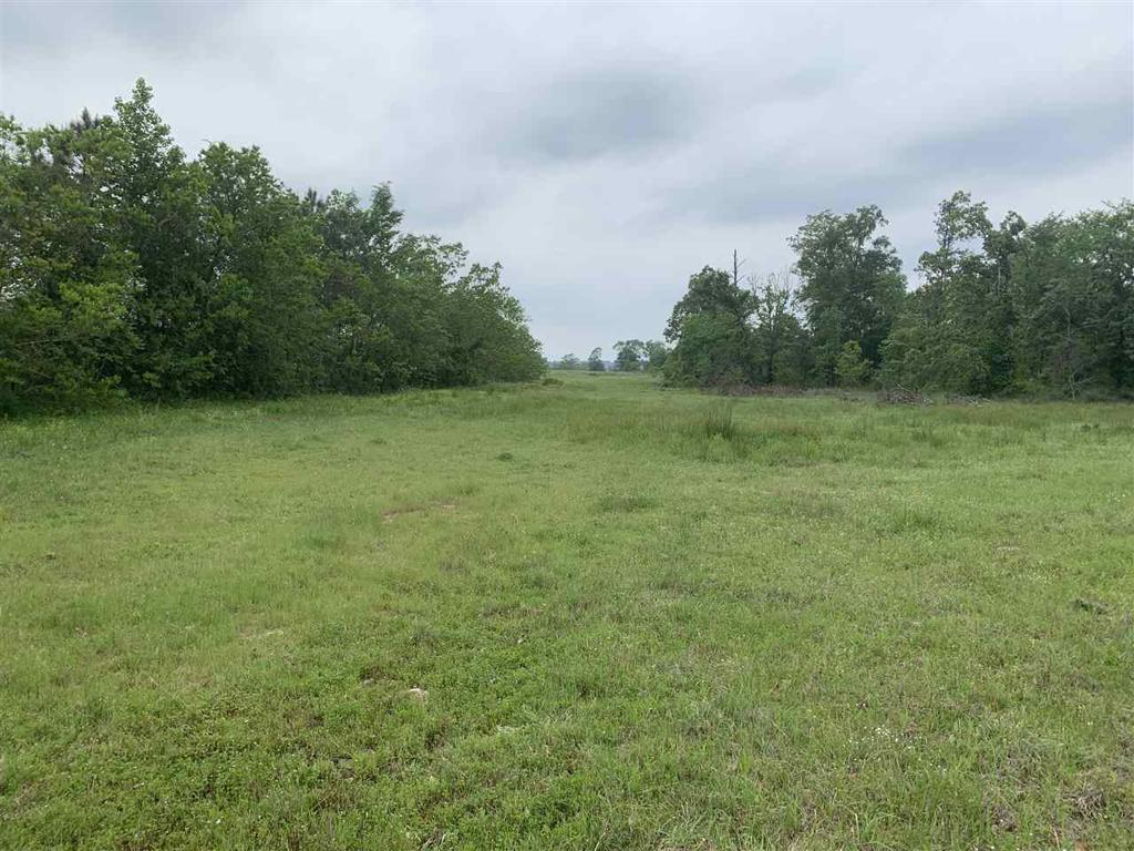 Photo of home for sale at TBD County Road 401, Carthage TX