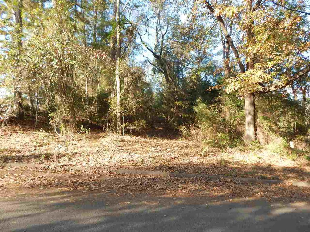 Photo of home for sale at tbd lot 13 PINECREST ST., Gilmer TX
