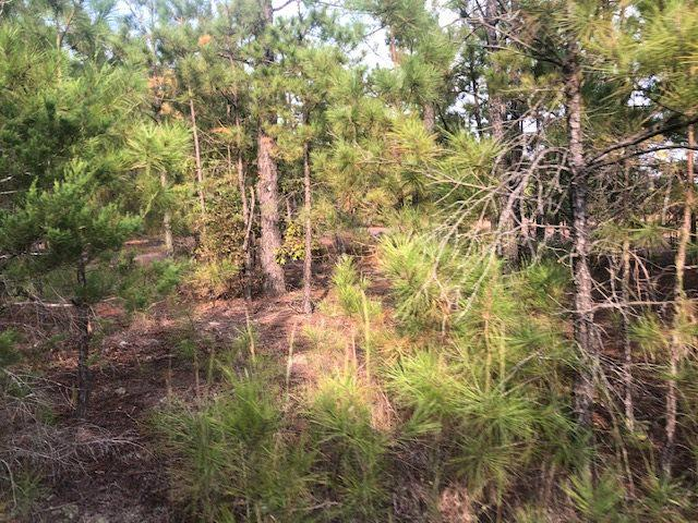 Photo of home for sale at TBD CR 4114 LOVELADY RD, Hughes Springs TX