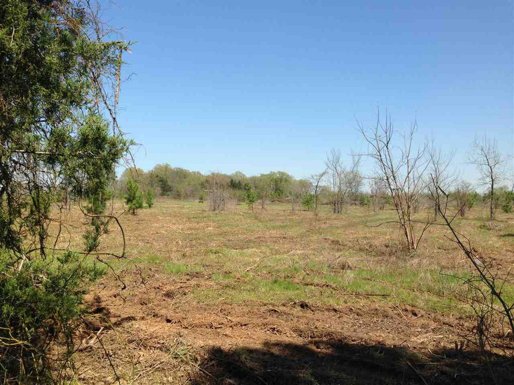 Photo of home for sale at #2 CR 153, Carthage TX