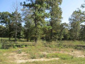 Property for sale at Lot 30 Willow Creek Ranch Rd, Gladewater,  Texas 75647