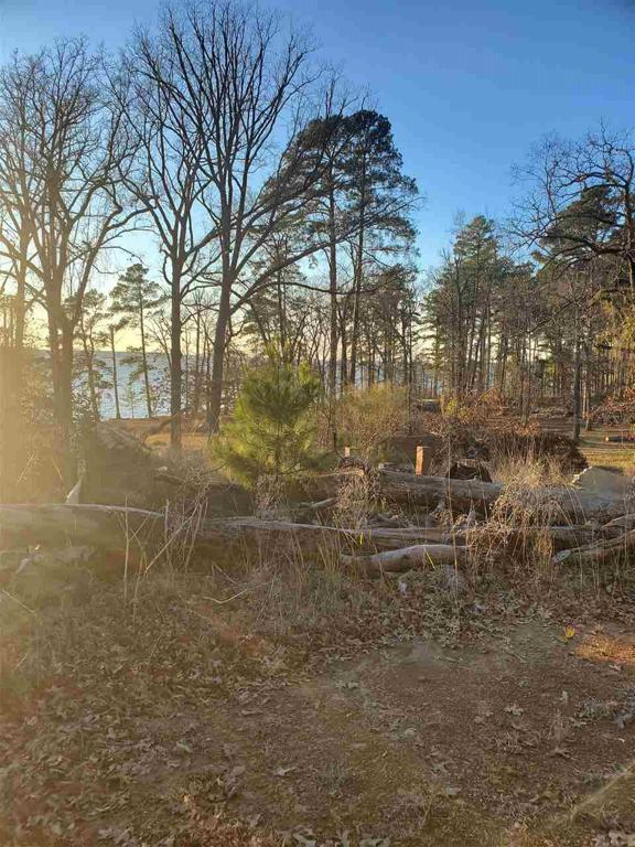 Photo of home for sale at TBD McKenzie Rd, Avinger TX