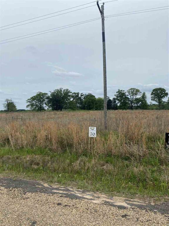 Photo of home for sale at Lot 70 PR 52320, Pittsburg TX