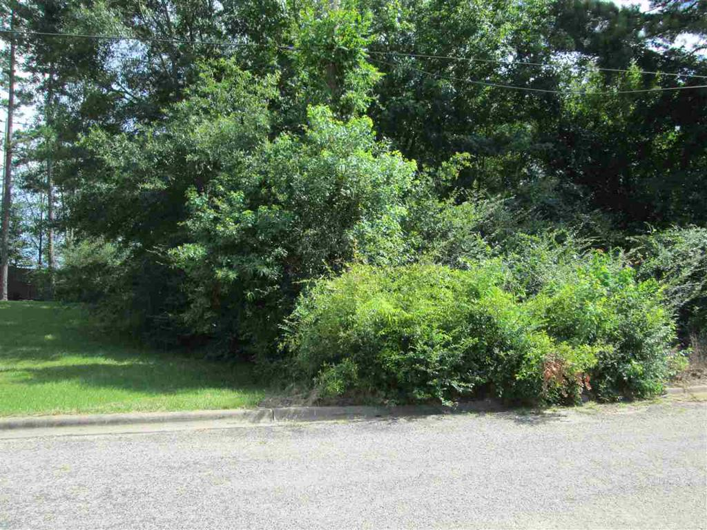 Photo of home for sale at TBD Rosewood Circle, Marshall TX