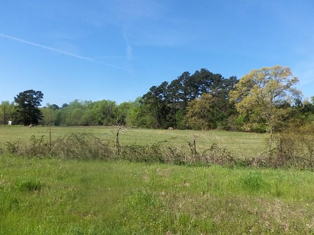 Photo of home for sale at TBD U.S. HWY. 259 N., Kilgore TX