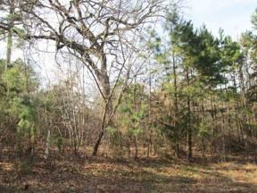 Property for sale at Tr 2 Willow Creek Ranch Rd, Gladewater,  Texas 75647