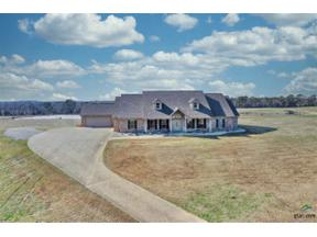 Property for sale at 323 Old SH 31, Kilgore,  Texas 75662