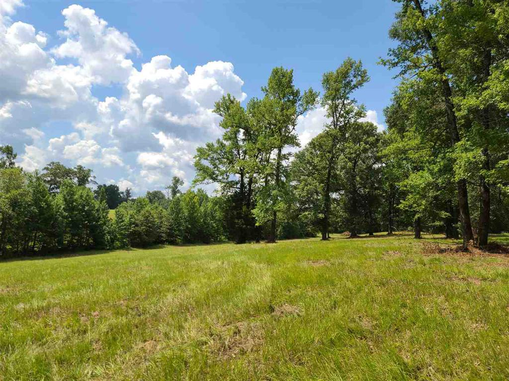 Photo of home for sale at TRACT 1 HWY 300, Gilmer TX