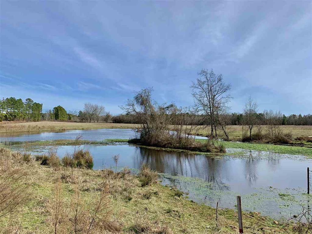 Photo of home for sale at 87 MC 154, Doddridge AR
