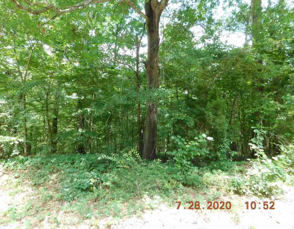 Photo of home for sale at LOT 280 ASHWOOD DR, Gilmer TX