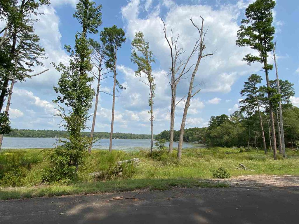 Photo of home for sale at TBD CR 3440, Hawkins TX