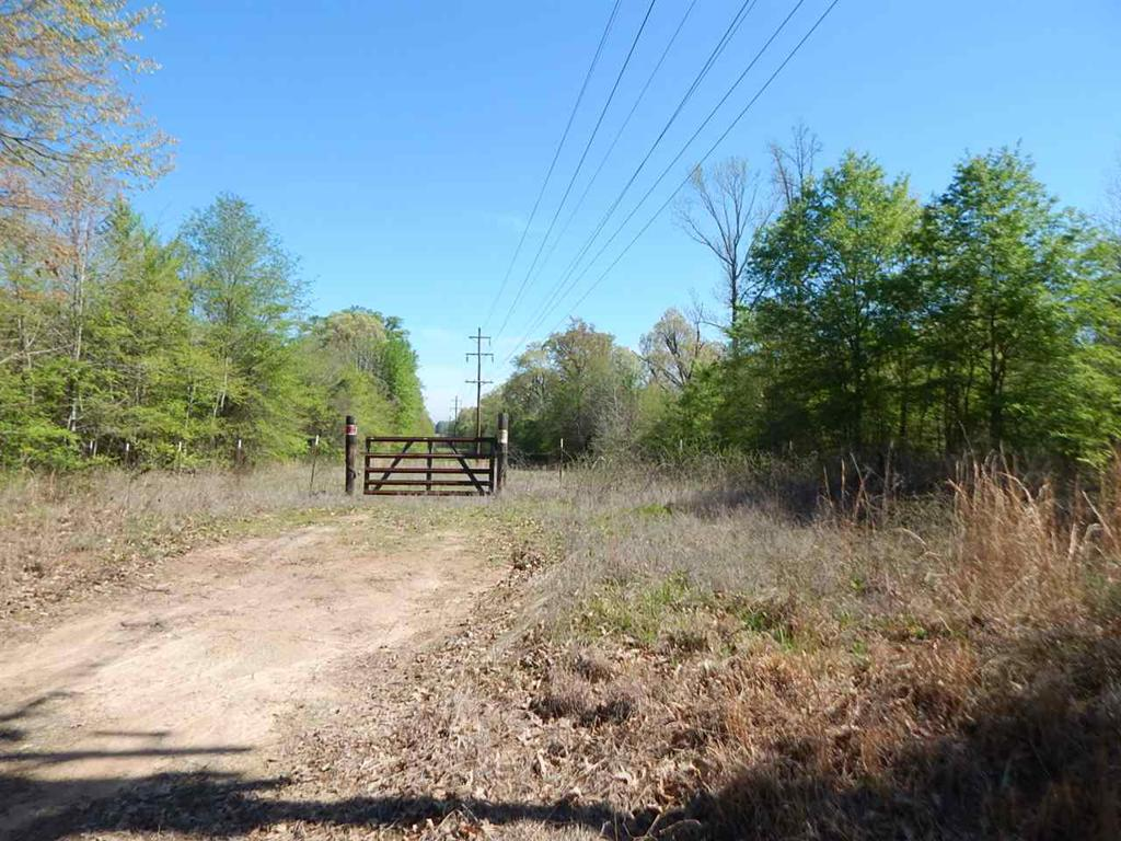 Photo of home for sale at TBD 55 ACRES CHEROKEE TRACE, Gilmer TX