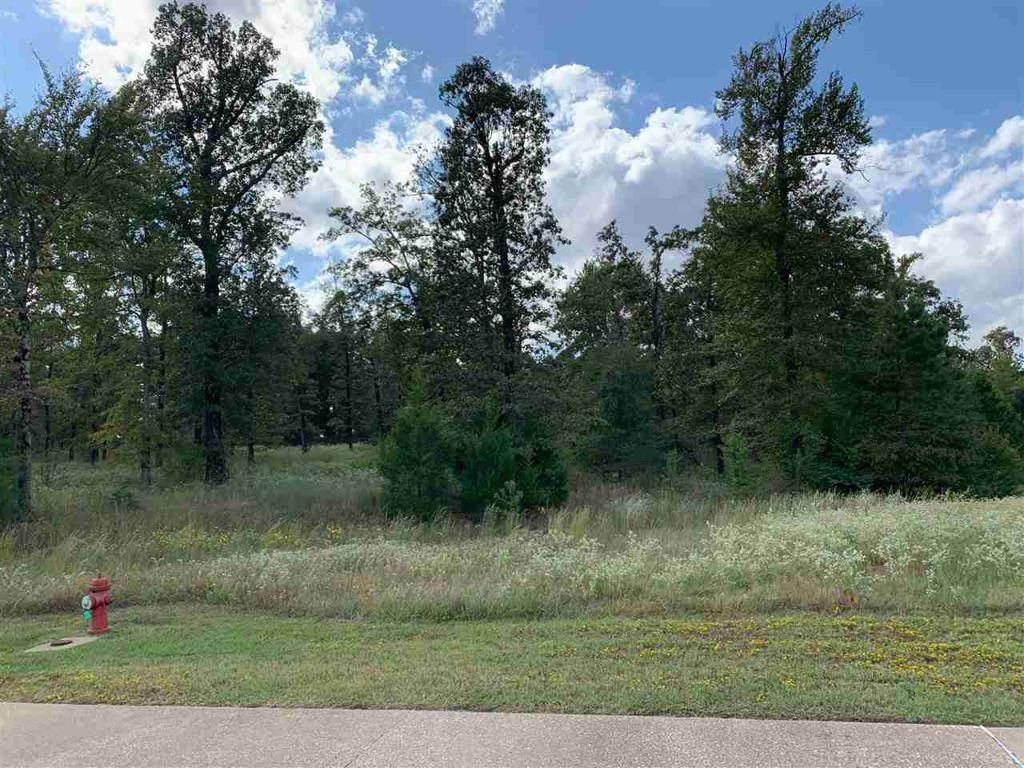 Photo of home for sale at Lot 3 Stone Ridge Trail, Longview TX