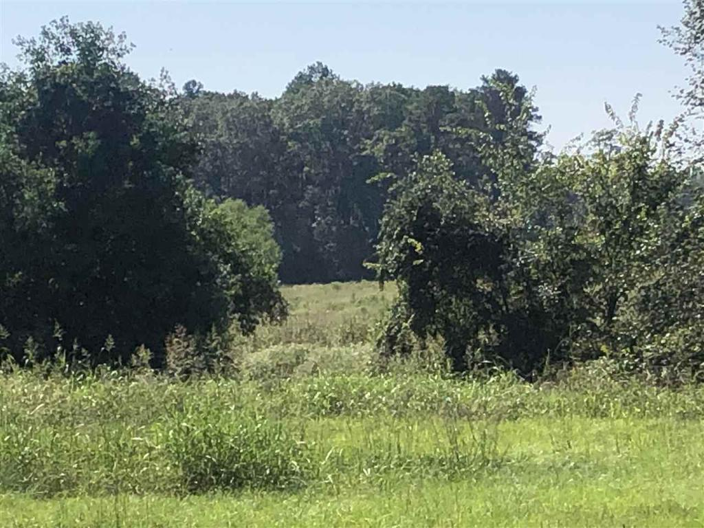 Photo of home for sale at TBD Cox Rd, Marshall TX
