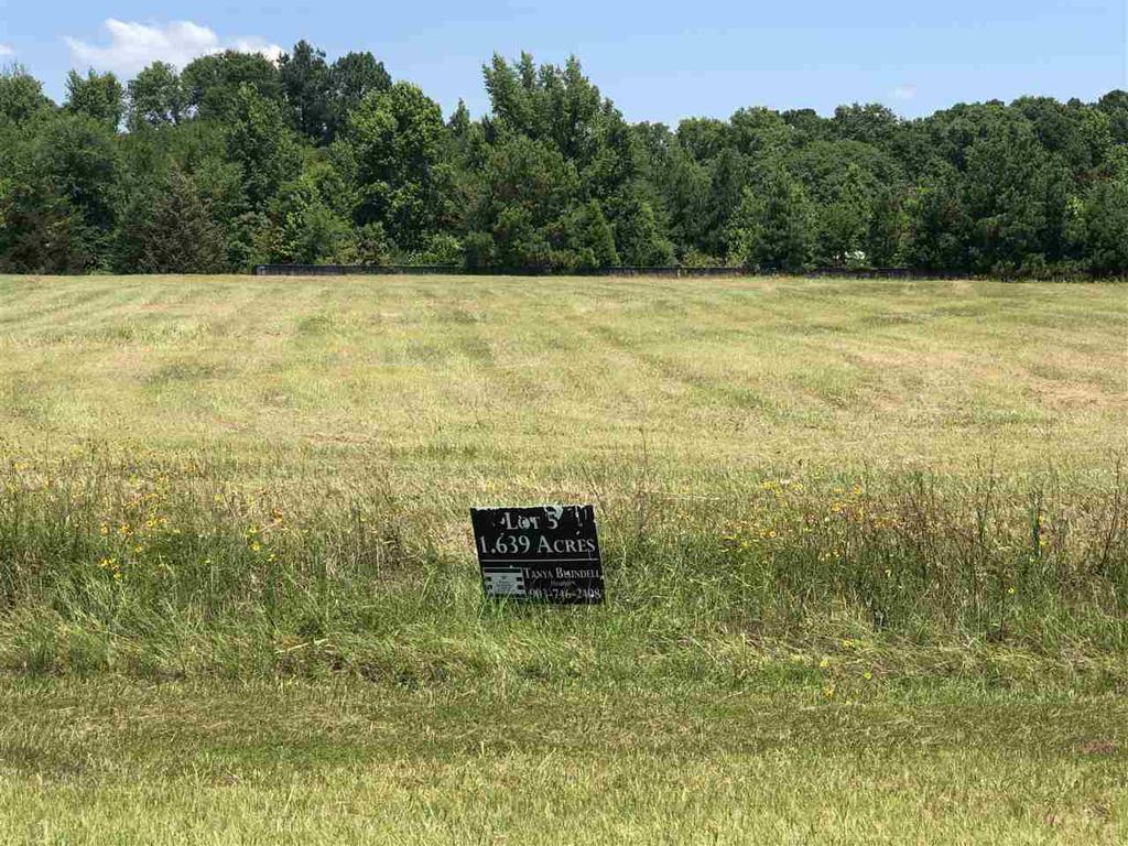 Photo of home for sale at LOT 5 JACOBIN CREEK DR, Gilmer TX