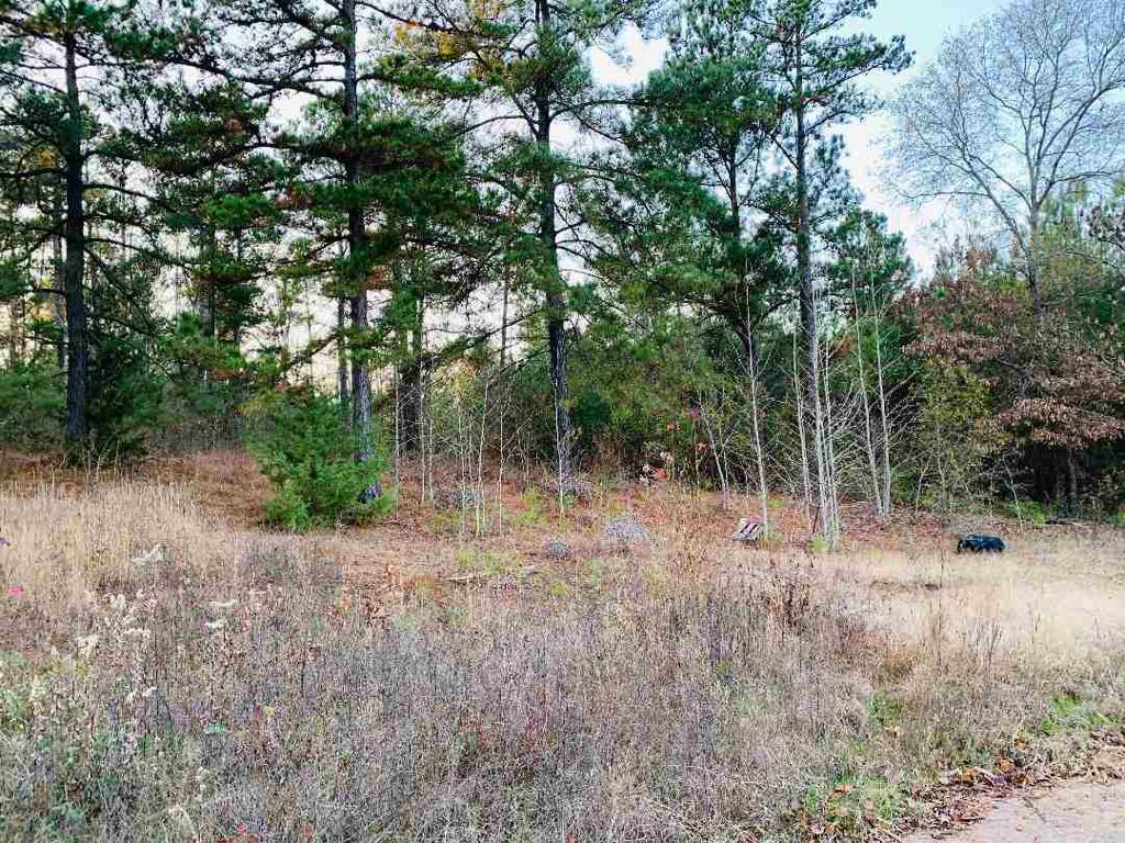 Photo of home for sale at TBD NEWSOME, Gilmer TX