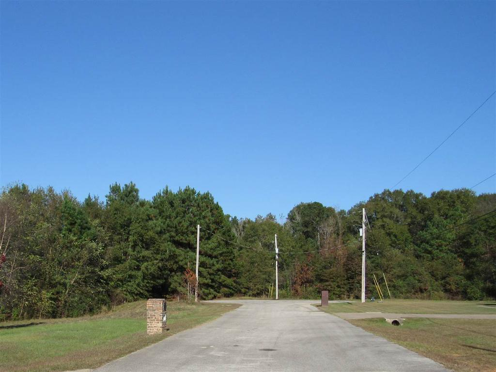 Photo of home for sale at Block E Lot 11 Birdie Ln, Gladewater TX