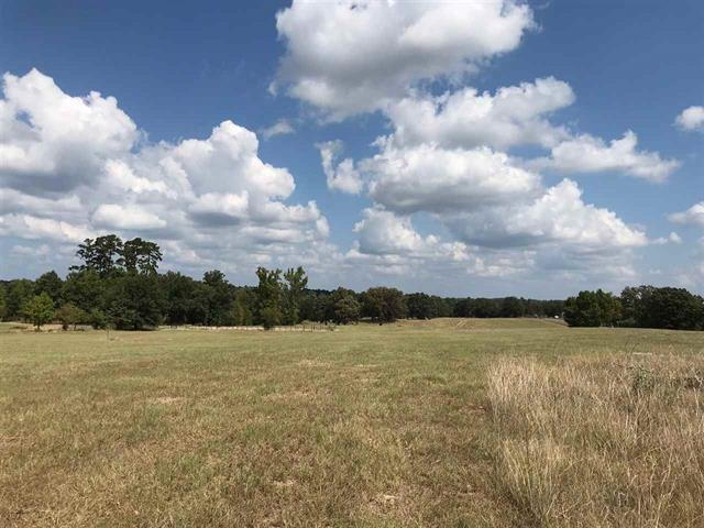 Photo of home for sale at TRACT 11 FM 3358, Gilmer TX