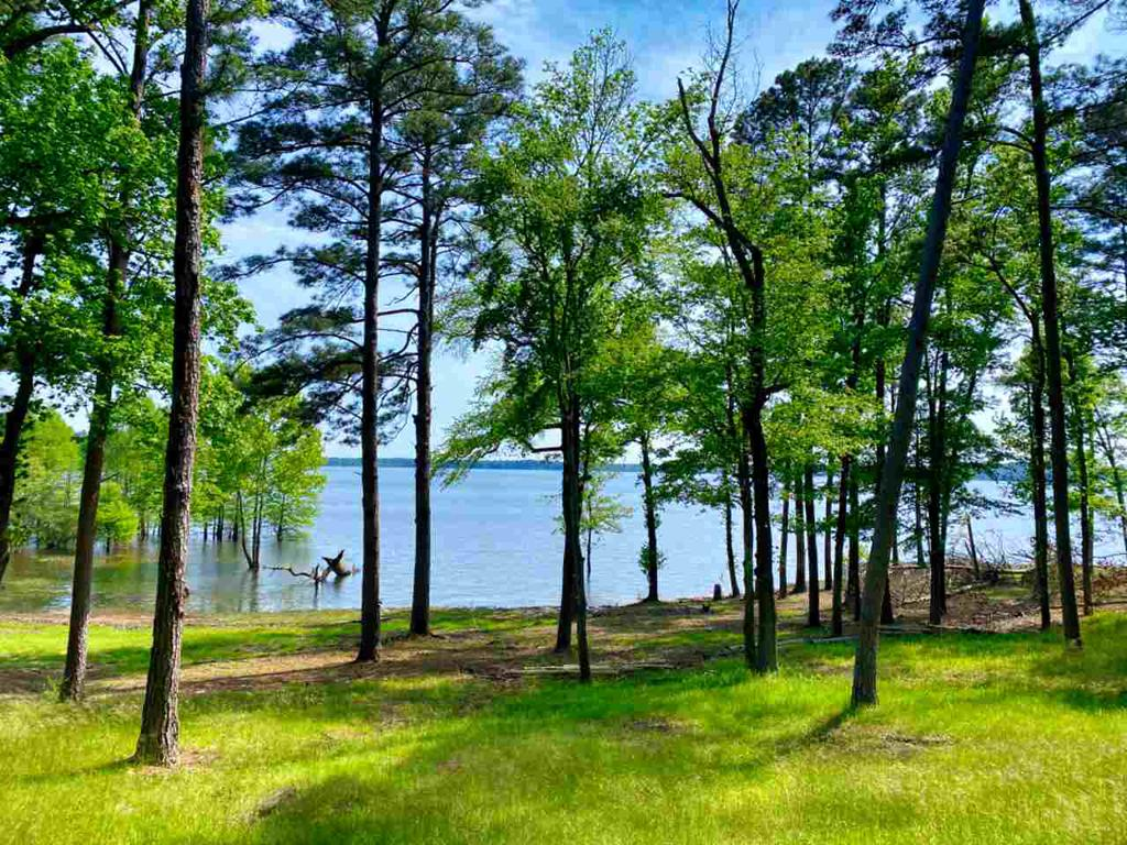 Photo of home for sale at 595 Lakeside Place, Avinger TX