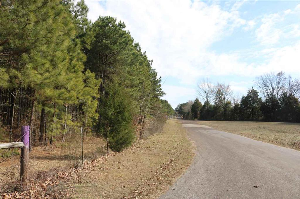 Photo of home for sale at TBD FM 2263 & Bluebell Road Tract 3, Gilmer TX