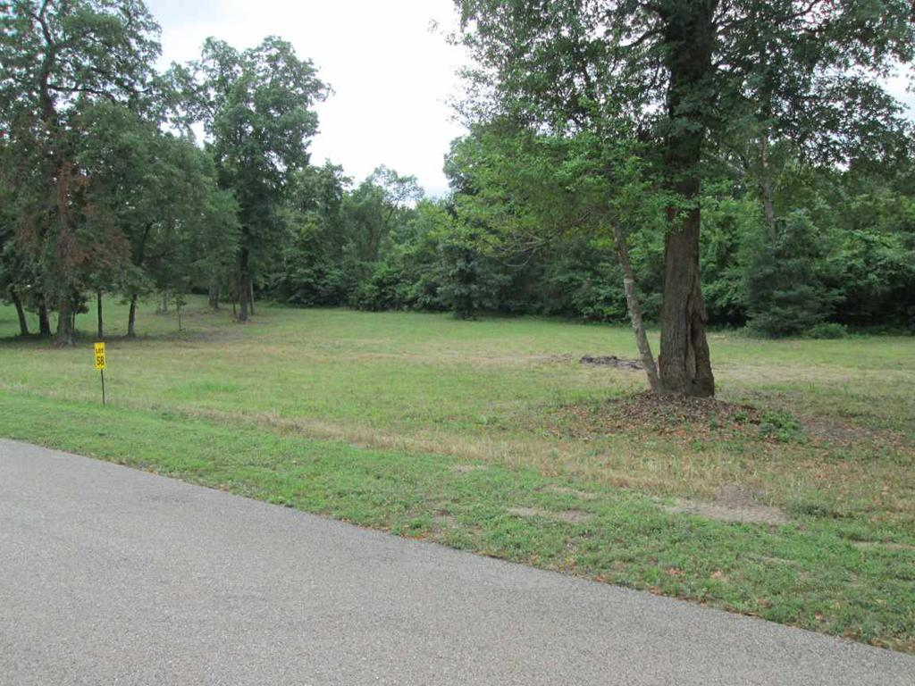 Photo of home for sale at Lot 58 Widgeon Ln, Gilmer TX