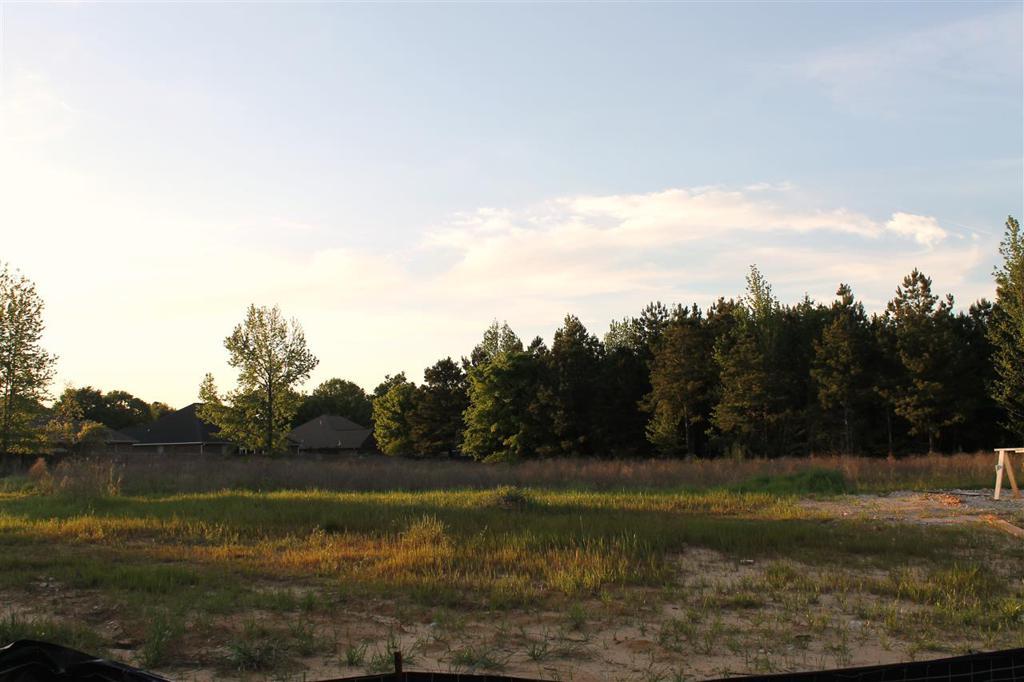 Photo of home for sale at 6705 Palisades, Texarkana TX