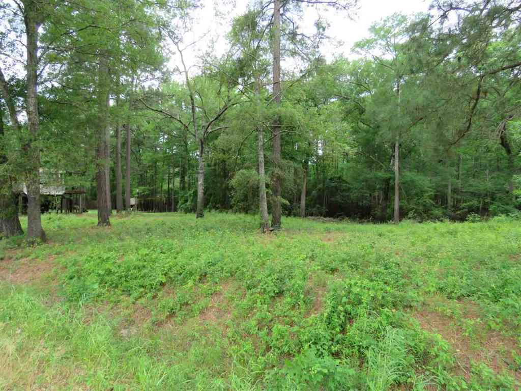 Photo of home for sale at LOT 12 & 13 LORI DR, Karnack TX