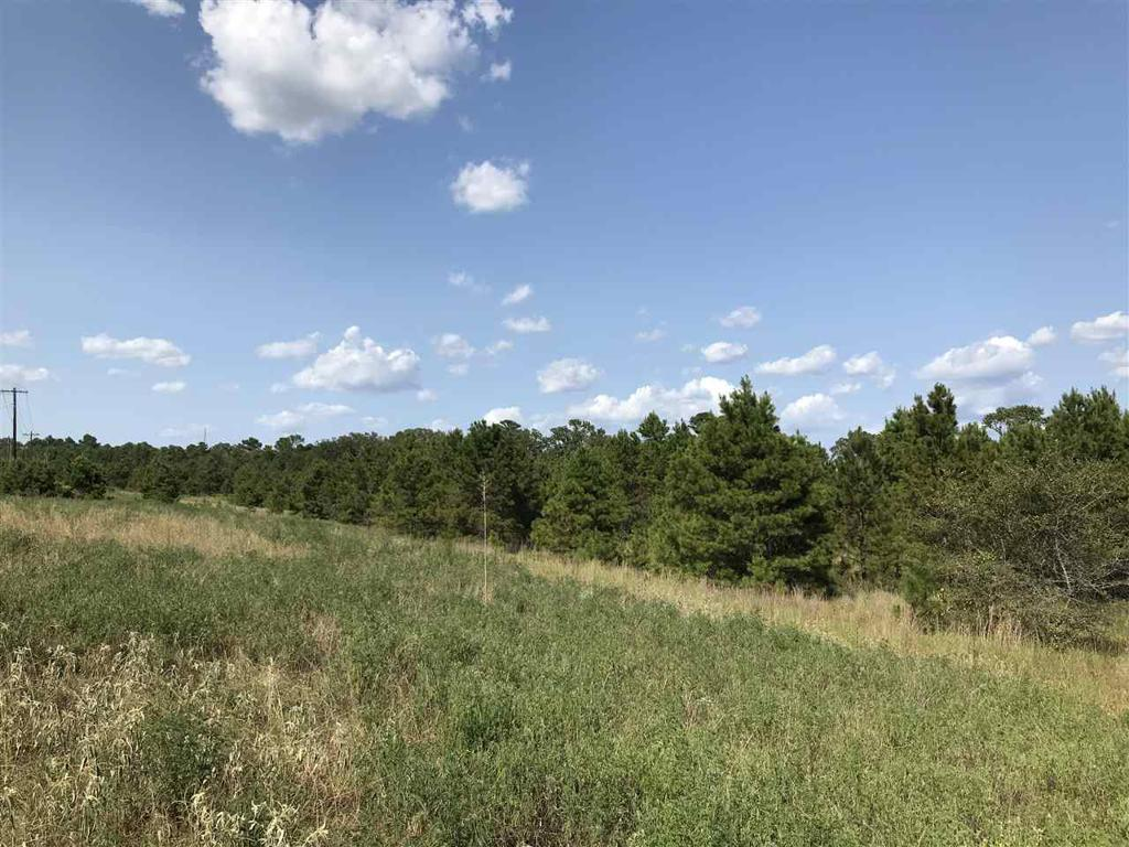 Photo of home for sale at TBA Loop 564, Mineola TX