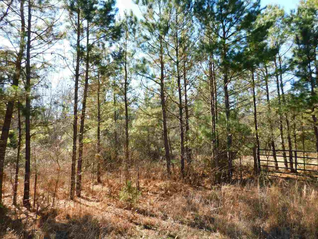 Photo of home for sale at TBD BLACK WALNUT, Gilmer TX
