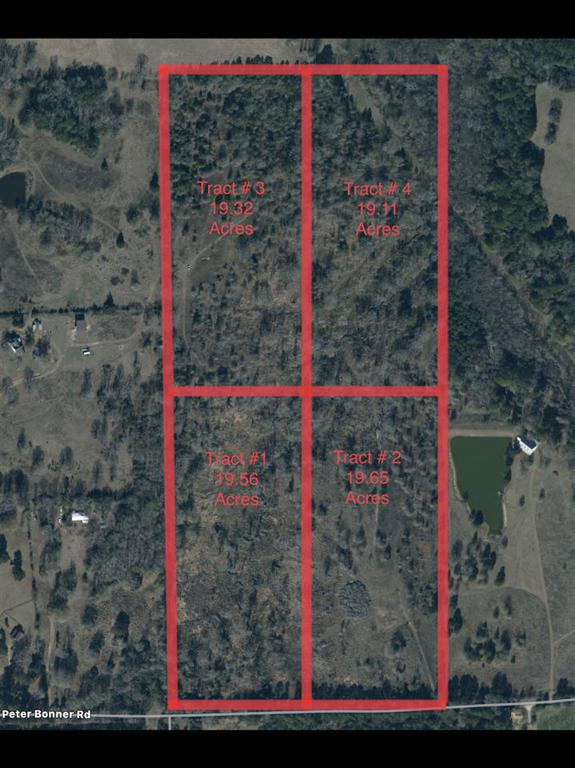 Photo of home for sale at TBD Peter Bonner Rd, Hallsville TX