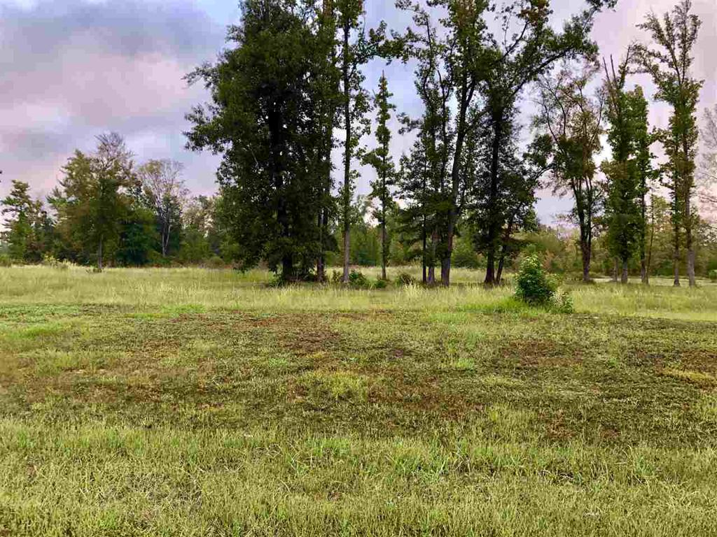 Photo of home for sale at TBD CR 2160 D Lot 8, Tatum TX
