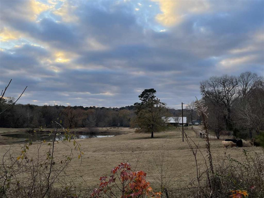 Photo of home for sale at 902 MT PISGAH RD, Kilgore TX